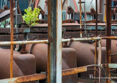 urban-nature-zollverein-0005