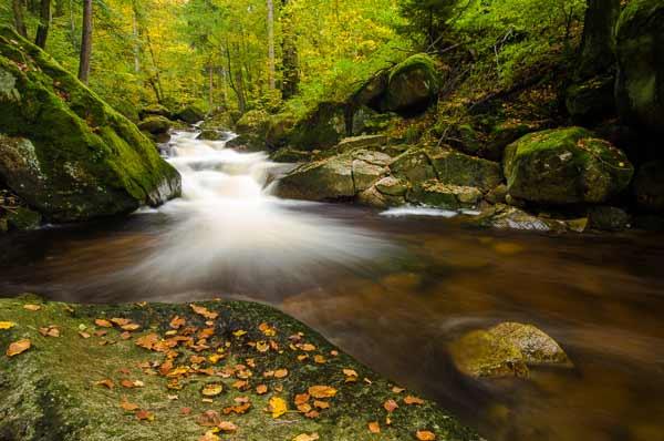 Harz Nationalpark