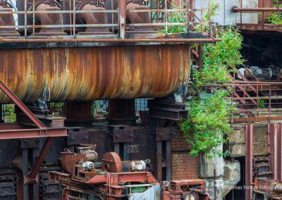 urban-nature-zollverein-0001
